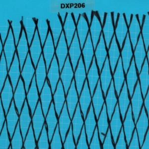 DXP206