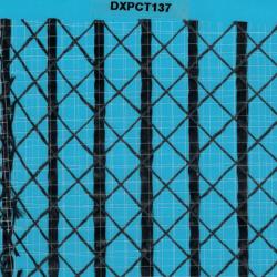 DXPCT137