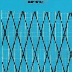 DXPTR169